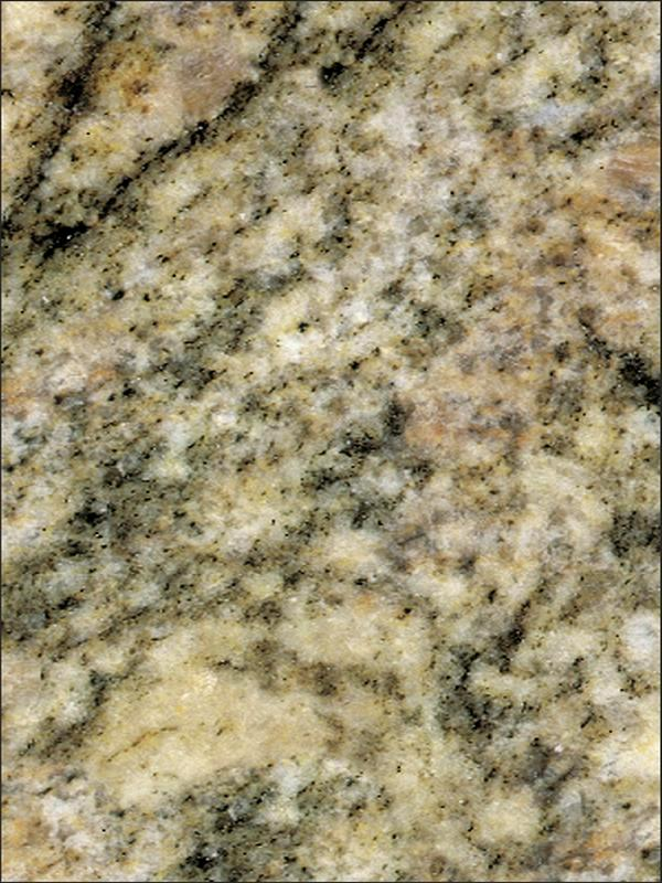 Ivory Gold Granite Image